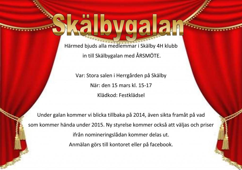årsmöte2015-1 kopiera
